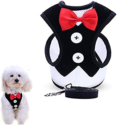 Amazon.com : uFashion3C Dog Harness and Leash Set with Fancy Dress