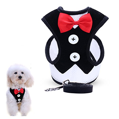 Dog Harness Dress Set - uFashion3C Dog Harness and Leash Set with Fancy Dress Red Bow Tie and Black Vest for Puppies and Smaller Dogs (Small, Black)