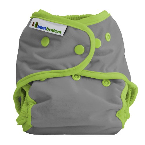 Best Bottom Cloth Diaper Shell-Snap, Dragonfly Ripple - Fly In Dry Shell