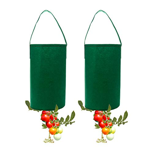 (Takefuns Upside Down Tomato Planter Topsy Turvy Tomato Planter Hanging Planter Grow Bag Flower Herb Bags Plant Pouch Bag,Pack of 2)