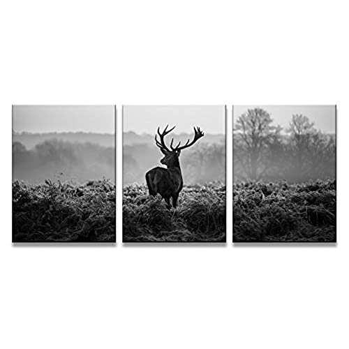 Yixuanwall HZ3040art Canvas PrintsBlack And White Deer Wall Art Oil Paintings Printed Pictures Stretched For Home DecorationHS30X40 3