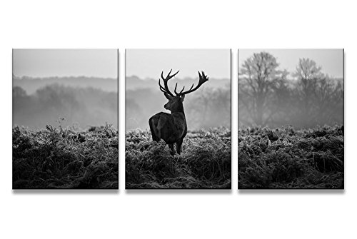 yixuanwall HZ3040art-canvas Prints,Black and white deer Wall Art oil Paintings Printed Pictures Stretched for Home (Deer Canvas)