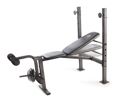 Golds Gym Xr 6 1 Weight Bench Buy Online In Uae