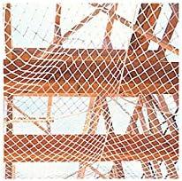 【代不】 【5枚入】 墜落防止用 安全ネット (アミゼット) 2畳用 0.85×3.40 緑ロープ色(青色) AX9002 TANAKA タナカ アミ