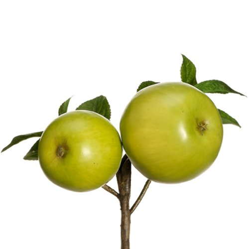 8'' Artificial Apple Pick -Green (pack of 12) by SilksAreForever