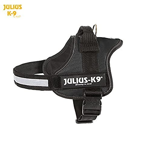 julius-k9 Power - Arnés para tamaño 0 negro - con placa ...