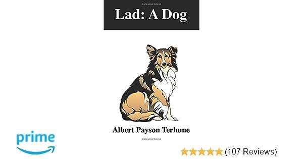 Lad: A Dog: Albert Payson Terhune, S R P: 9781978050426