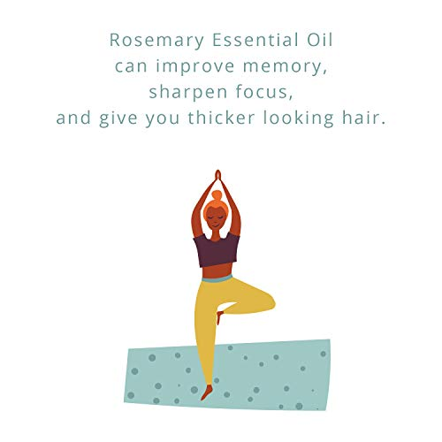 100% Pure Rosemary Essential Oil for Therapeutic Aromatherapy Stimulating Scalp Treatment for Healthy Hair Growth Anti Aging Antioxidant Ancient Beauty Elixir Natural Skin Care for Acne and Wrinkles
