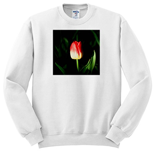 Price comparison product image Alexis Photography - Flowers Tulip - Sunlit Red and Yellow Tulip, Beautiful Green Leaves, Dark Backdrop - Sweatshirts - Youth Sweatshirt Med(10-12) (SS_273831_11)