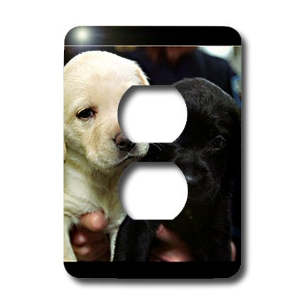 3dRose lsp_1219_6 Black And Yellow Lab Puppies 2 Plug Outlet Cover
