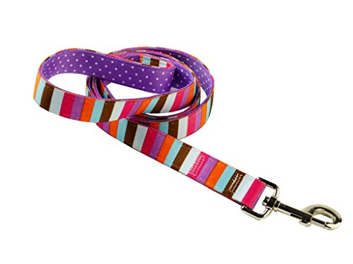 Yellow Dog Design Uptown Multi-Strike on Polka Dot Dog Lead, 3/4-inch, Purple (Design Purple Strike)