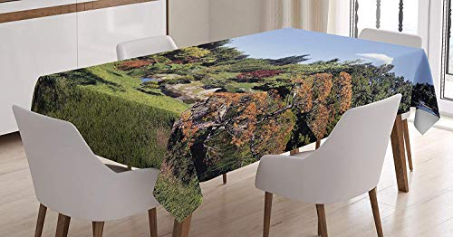 Bamboo Blue Tree (VAMIX Asian Tablecloth, Japanese Garden Park Forest Various Kinds of Trees Bamboo Eastern Natural Landscape, Dining Room Kitchen Rectangular Table Cover, 60W X 84L inches, Green Blue)