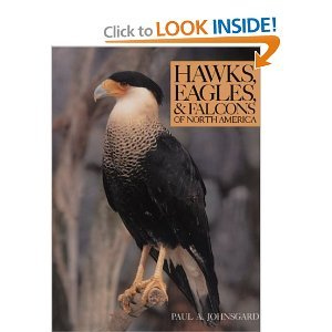 Hawks Eagles and Falcons of North America byJohnsgard