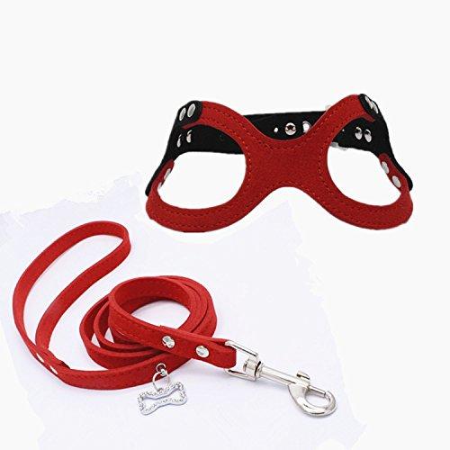 Dogs Kingdom Adjustable Buckle Closure Belt Dog Harness and Leash Dog Eyeglass Chest Strap and Bone Tag Leash Set Red M