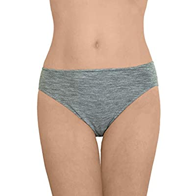Women's Thermal Panties Briefs: Moisture Wicking Merino Wool Silk at Women's Clothing store