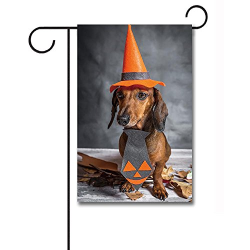 Banedy Dachshund Dog Dressed Funny Halloween on Wooden Table Garden Flag 12.5