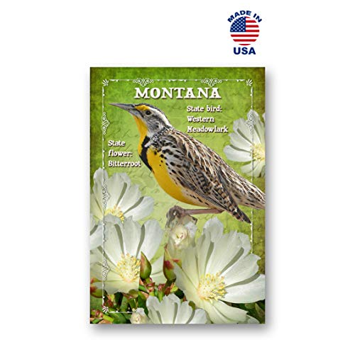 MONTANA BIRD AND FLOWER postcard set of 20 identical postcards. MT state symbols post cards. Made in USA.