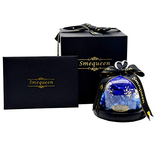 Smequeen Beauty and The Beast Rose, Preserved Fresh Flower with Fallen Petals in a Glass Box (Navy Blue)