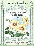 Nasturtium - Vanilla Berry Seeds