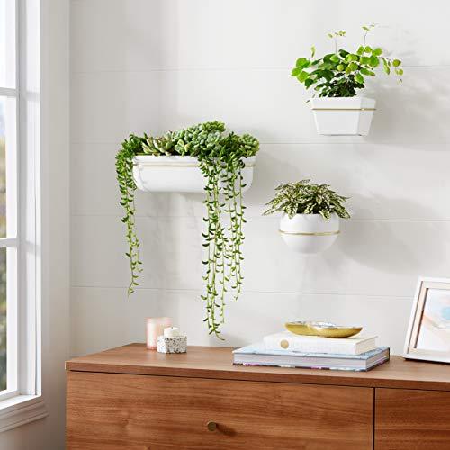 AmazonBasics Wall Planter, Oval - White/Brass