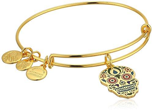 Alex and Ani Color Infusion, Calavera EWB Shiny Gold Bangle Bracelet