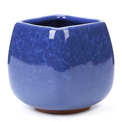 - DawnLam 3 inches Ceramic Ice Crack Small Cute Succulent Plant Pots,Cactus Plant Pot,Flower Planter Pot with Drainage for Home and Kitchen Decoration (Royal Blue)
