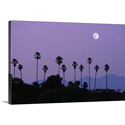 GREATBIGCANVAS Gallery-Wrapped Canvas Entitled Moon Over Palm Trees at Dusk, Hollywood, Los Angeles, California, USA by 18