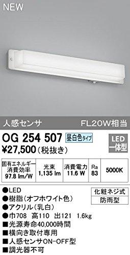 オーデリック エクステリアライト OG254507 B00LINPJO0 14256
