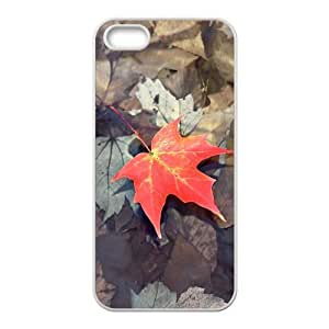 Fallen Maple Leaves Fashion Personalized Phone Case For Iphone 6 plus 5.5