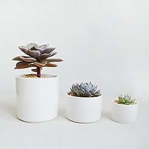 Cylinder White Porcelain Succulent Planter-White Ceramic Cacti Pots-Modern Minimalist-Decorative Centerpiece (L)