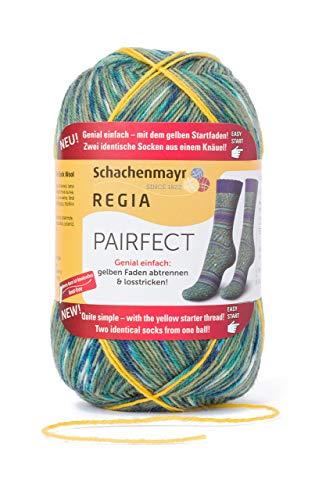 Regia Pairfect Sock Yarn (Lagune)