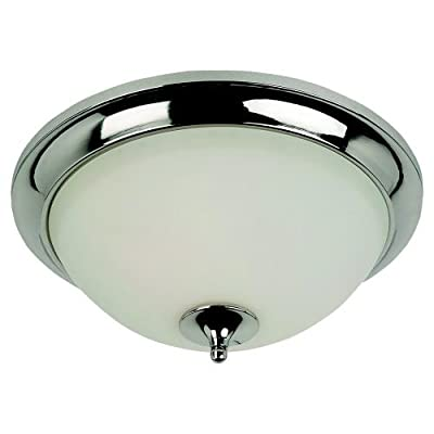 Sea Gull Lighting 75971-841 Ceiling Light