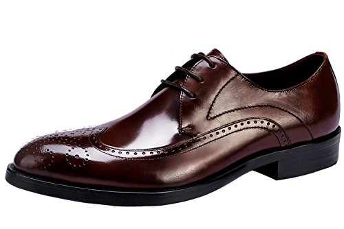 Perforated Santimon by Comfort Brown Casual Leather Up Mens Dress Classic Shoes Shoes Brogue Lace 47qfO0