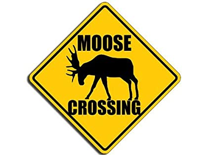amazon com moose crossing sign shaped sticker hunt fun decal