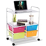 GHP 25.0''x14.5''x29.5'' Steel & Plastic 2 Metal Shelves & 4 Drawers Rolling Storage Cart
