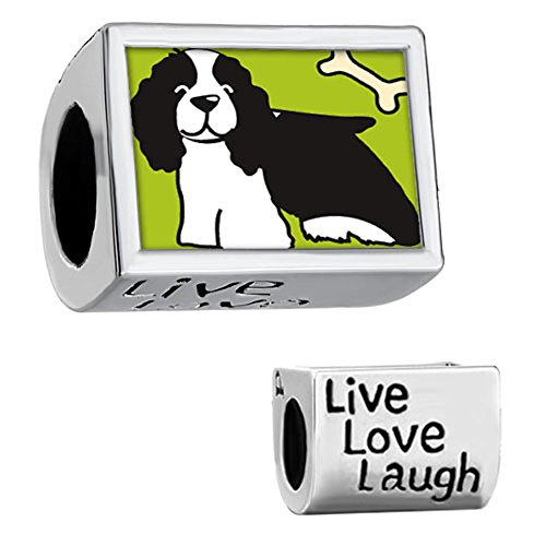 Spaniel Dog Photo Charm (CharmsStory Springer Spaniel Dog Charm Silver Plated Live Love Laugh Photo Bead For)