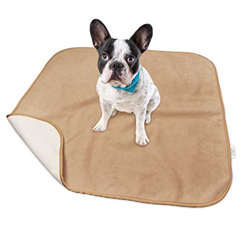 """NEXTCOVER Waterproof Dog Blanket-Fleece Blankets Sleep Mat Pad Bed&Couch Cover for Dogs,Cats&People,Reversible Microfiber,Multiple Sizes,18""""×18"""""""