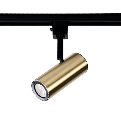 WAC Lighting J-2010-930-BR LED2010 Silo X10 Head in Brushed Brass for J or J2 Track, 10 ()