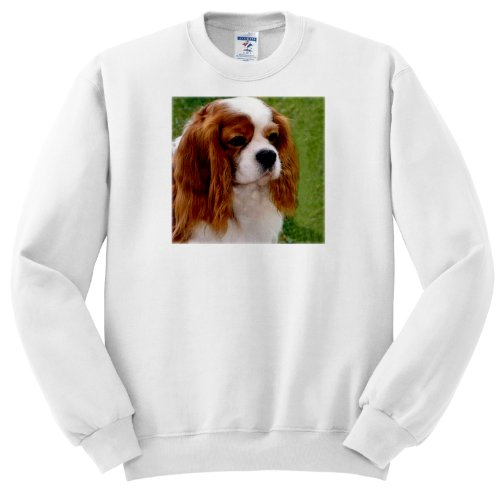 Cavalier King Charles Spaniels - Youth SweatShirt Med(10-12)