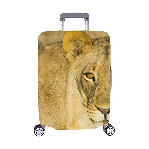 (Wildlife In Nxai Pan National Park Pattern Spandex Trolley Case Travel Luggage Protector Suitcase Cover 28.5 X 20.5 Inch)
