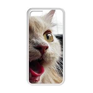 Cute Nauty Cat White Phone Case for iPhone 5 5s