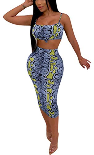 Women Sport Active 2 Piece Tracksuits Print Top Skinny Skirts Set Jogger Outfits Suit Blue L ()