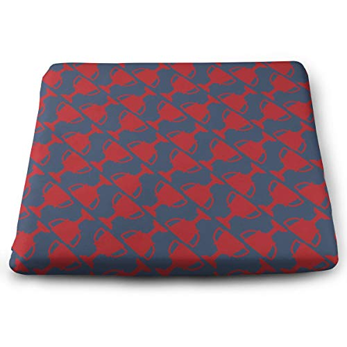 Foam Trophy (WEIPING LF Red Trophy Memory Foam Seat Cushion, Chair Pad)