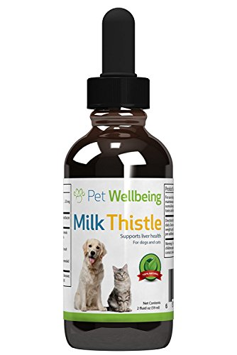 Pet Wellbeing – Milk Thistle for Dogs – Natural Glycerin Based Milk Thistle for Dogs 41sULAJkz4L