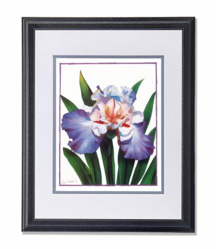 Iris Flower Floral Arrangement Wall Picture W/G Matted Framed Art Print