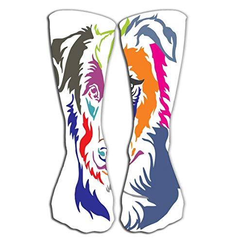 - qilifz Outdoor Sports Men Women High Socks Stocking Colorful Decorative Portrait Dog Border Collie illustr Colorful Decorative Portrait Dog Border Collie Tile Length 19.7
