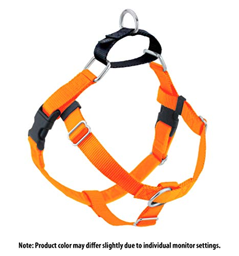 Orange Hounds (2 Hounds Design Freedom No-Pull Dog Harness, Adjustable Comfortable Control Dog Walking, Made in USA (Leash Sold Separately) (Small 5/8