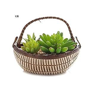 Succulents Bonsai Flor Simulada Suculente Planta DIY Flor ...
