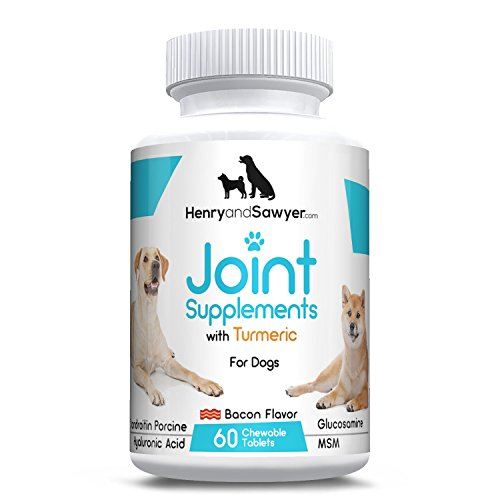 Henry and Sawyer Joint Supplement For Dogs, All New VETERINARIAN-GRADE Advanced Hip & Joint Supplement for Dogs with Glucosamine,Turmeric, Chondroitin, MSM and Hyaluronic Acid