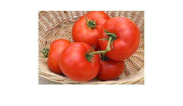 Shoppy Star: Montaña de la princesa (herencia) de tomate 150 ...